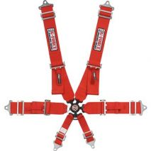 Camlock Individual Shoulder Pull-Down 6-pt Harness Set by G-Force Racing Gear